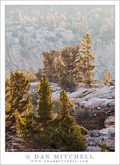 Trees and Granite, Morning Light (G Dan Mitchell) Tags: california park morning trees light usa mountain nature rock america print landscape pond haze nevada north stock lakes atmosphere canyon basin sierra kings national license granite wilderness intimate range 60 sixty seki glaciated subalpine
