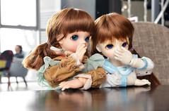 DSC_4628 (Yako('`)) Tags: hana bjd leila bluefairy dollphotography shinyfairy bjdphotography