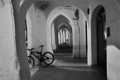 (cerezas negras) Tags: blancoynegro noche bicicleta arco menorca piedra viceva