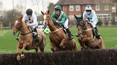 And they're off! (Steve Barowik) Tags: yorkraces racecourse grandstand horse jockey trainer groom cropframe saddle plate whip hunter chaser hound pointtopoint point2point stevebarowik barowik 70200mmf28vrii jorvik ebor eboracum jump fence hurdle canter hack sbofls26 nikond500 quantumentanglement wonderfulworld unlimitedphotos flickrelite dx westofyore hunt askhambryan