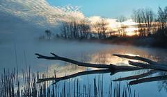 Lake?  Interstate Sunrise (nelhiebelv) Tags: lakeinterstate eatoncounty sunrise foggy reflection