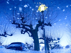 Strarry tree (A. Yousuf Kurniawan) Tags: cameraphone tree nightphotography night bluesky sky sunset water puddle rain lamp reflection blue twilight car drizzle abstract