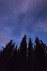 Stars and Clouds (Lars Øverbø) Tags: night evening sky clouds stars tree forest norway norge bagn canoneos5dmarkii canonef14mmf28liiusm