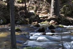 DSC_1626 (alpiste28) Tags: rios river worldwidelandscapes