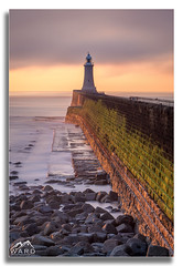 Tynemouth Pier (wardphotography1) Tags: pier sun sunrise water sea ocean sescape colour sky canon uk 5d4 5dmk4 leefilters 70200 explore