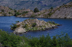 imgp3907 (Mr. Pi) Tags: lake andes rocks mountains chile torresdelpaine hills patagonia trees nationalpark