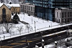 Across the street (VV Nincic) Tags: toronto ontario cans2s canada nikond5300 snow