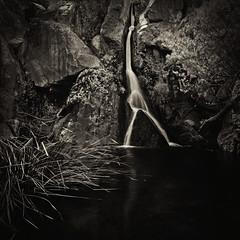 Darwin Falls - Death Valley National Park (Mike Schaffner) Tags: bw blackwhite blackandwhite canontse24mmf35lii cascade darwinfalls deathvalley deathvalleynationalpark dvnp falls monochrome nationalpark park pool rocks sepia tiltshift water waterfall