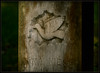 On The Wings Of a...... (Ernie Misner) Tags: f8andtreadlightly oldsettlerscemetery lakewoodwa lakewood washington cemetery headstone erniemisner nikond800 lightroom photoshop luminositymask capturenx2 cnx2