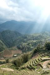 Farmland (Jeremy Brooks) Tags: agriculture catcatvillage colorefexpro landscape sapa vietnam camera:make=fuji camera:make=fujifilm camera:model=xt2
