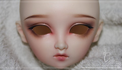 Volks SD Sara (Lua Garo - Garo Doll) Tags: color ball for ancient doll sara dolls sd cast lua bjd resin custom volks lunita lullaby jointed garo commissions garos