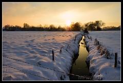 Winterabend in Bnningstedt (Gelegenheitsknipser) Tags: schnee winter sunset snow creek germany deutschland dawn evening abend weide europa europe sonnenuntergang dorf village au wiese 2006 bach pi dmmerung sh landschaft schleswigholstein pinneberg graben norddeutschland northerngermany wasserlauf daemmerung kreispinneberg gelegenheitsknipser bnningstedt boenningstedt mpfotonet gelegenheitsknipserde marcopagel
