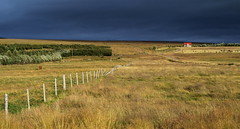 Reykholt Fields (nelhiebelv) Tags: iceland fields reykholt