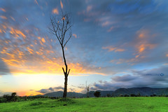Horizon (Aadilsphotography) Tags: park sunset grass clouds canon moving long exposure angle wide hdr f9 10mm