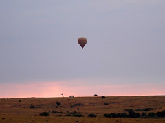 DSC00711 (H Sinica) Tags: balloon safari hotairballoon savanna masaimara maasaimara
