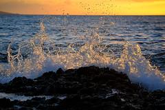 heaven (marisa m photography) Tags: ocean blue sunset sea beautiful gold hawaii bay waves maui ahihi