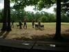 GreyhoundPlanetDay2008021