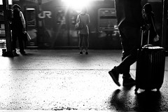 Shadowgraph (9/9) - Last Scene (Yoshi T. (kagirohi)) Tags: railroad blackandwhite bw monochrome station japan train blackwhite cityscape railway jr osaka        localline