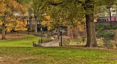 CP-D300-Autumn-35mm_0107d (JB Artful Photo) Tags: park new york autumn color art fall colors beautiful 35mm nikon pretty yorknew citynew nikond300 parkmanhattannycnew f18gcentral
