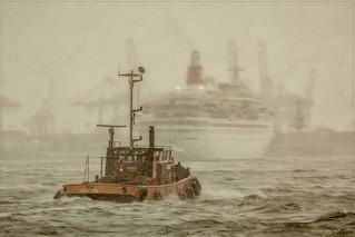 Hamburg - Schlepper Hofe - Snowstorm