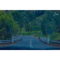 On the road to Byron Bay (Zaynab AlAlawi) Tags: road street trees sky green nature car bay sydney roadtrip brisbane nsw qld byron narrow byronbay uploaded:by=flickrmobile flickriosapp:filter=nofilter
