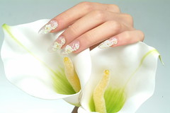 "Nail Design <a style=""margin-left:10px; font-size:0.8em;"" href=""http://www.flickr.com/photos/113576083@N04/11792355434/"" target=""_blank"">@flickr</a>"
