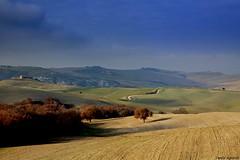 VAL D'ORCIA ( TOSCANA) (Danilo Agnaioli) Tags: alberi val cielo toscana terra paesaggi dorcia
