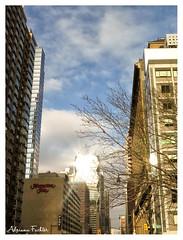 af1312_0796 (Adriana Füchter ... thank you for 6 Million Views) Tags: nyc newyork newyorkcity manhattan street city york new ny usa america brooklyn building predios gothamist adrianafuchter patrick estadosunidos unitedstatesofamerican cidade urbano veracidade urban sublime nuvens dissipação inverno adrianafüchter vintage retro antigo megalópole
