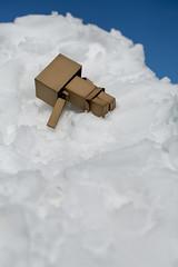 Omiya Big Snow (Norio.NAKAYAMA) Tags: snow japan  saitama heavy  omiya    danboard
