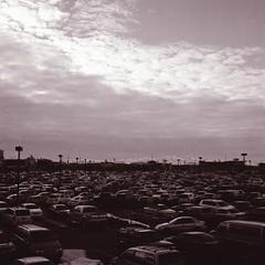 A Sea of Gluttony (Avintiquin) Tags: portrait bw white black film landscape utah xp2 bronica 400 toned ilford chromogenic s2a nikkorp