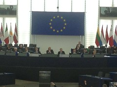 Strasburgo -  12 marzo 2014 - Votazioni nuova Direttiva VIA Zanoni (Andrea Zanoni) Tags: via marzo 2014 strasburgo votazioni direttiva