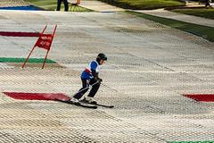 Skiing 019