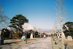 Tokyo travel_Day4 (chunichiu) Tags: film tokyo natura fujifilm 東京 naturaclassica superebc fujifilmc200 f2854 2856mm tokyotravelday4 和平寺