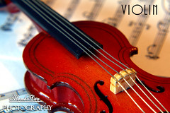 violin (Mambo'Dan) Tags: violin music musicinstrument closeup