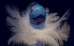 HMM-Egg-4944 (EB_Creation) Tags: macro macromondays mm hmm sigma sigma170700mmf2840 nikon nikond7100 dof depthoffield dx bleu egg chocolate food reflection mirror black blackbackground white feathers digital 2017 camera lens