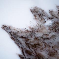 Frozen Sands 006 (noahbw) Tags: d5000 lakemichigan nikon abstract beach freezing frozen ice lake landscape natural noahbw sand shore shoreline snow square