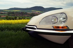 vintage car (pix-4-2-day) Tags: trees field grass car vintage landscape beige hill citroen ds seed rape hills bumper vehicle hood headlight bonnet indicator