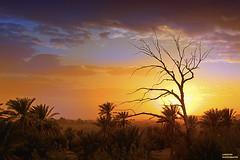 """sunset sahara (aziouezmazouz) Tags: nature beauty landscape amazing colours breathtaking beautifulscenery bellissima awesomeshot vibrantcolours beautifulcapture anawesomeshot fabuleuse """"flickraward"""" vividstriking blinkagain"""