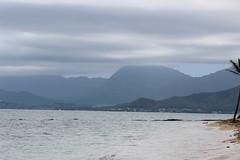 IMG_1831 (cheryl's pix) Tags: hawaii oahu kaneohe kualoaregionalpark kneohe kaneohehi kneohehi