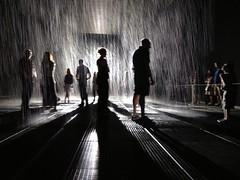 MoMA rain room. New York