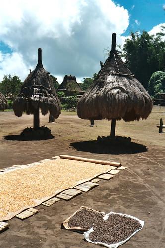 Nggela village, Flores