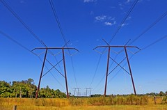 powerlines (CJONELC) Tags: abstract field florida powerlines pasture chuluota