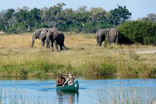 Botswana Okavango Delta Photo Safari 12