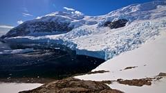 Paradise II (proefdier) Tags: cruise mountain ice berg meer flickr antarctica glacier gletscher eis 2012 ozean antarktis 50d nekoharbour msbremen