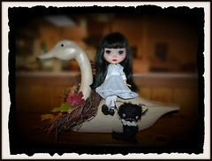 Minuet - Goose Girl