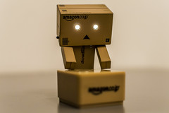 Danbo's box (jude_llewellyn) Tags: bristol nikon box nikond3200 danbo danboard danbophotography