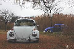 Buggin (RKSPhotography) Tags: fall leaves vw bug volkswagen beetle oldschool static hotrod slammed stance bagged airride stanceworks