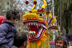 yellow dragon (Jordi Payà Canals) Tags: barcelona china new horse yellow festival canon eos is spring asia dragon year chinese culture catalonia canals parade celebration usm 70300mm jordi ef 2014 450d payà
