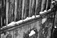 Couleurs d'hiver_389_DxO (Rmi Besserre) Tags: winter bw snow france europe hiver nb neige auvergne cantal