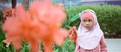 _MG_0055 (sengkenitz) Tags: lilydamia abenoor sengkenitz daliahana irisdafina bibiiklima